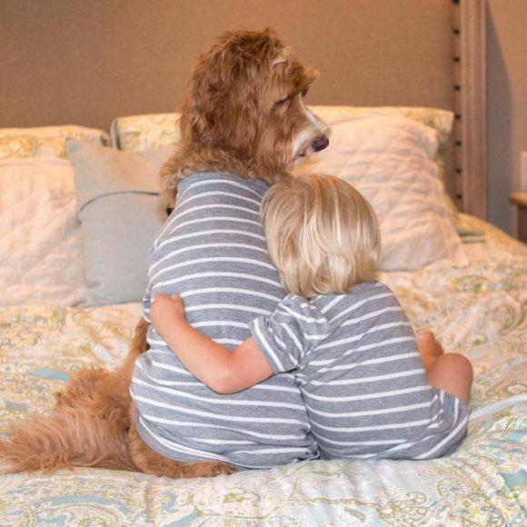 reagandoodle-dog-and-boy-14