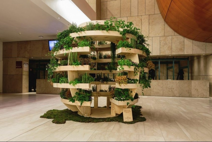 Направете сами убава и евтина домашна градина