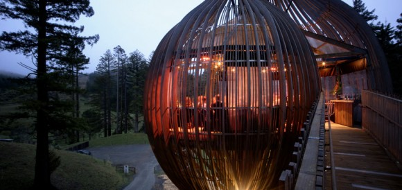 Treehouse-in-New-Zealand-Yellow-treehouse-by-pacific-environment-architects-016
