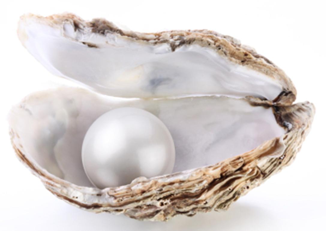 pearl-01