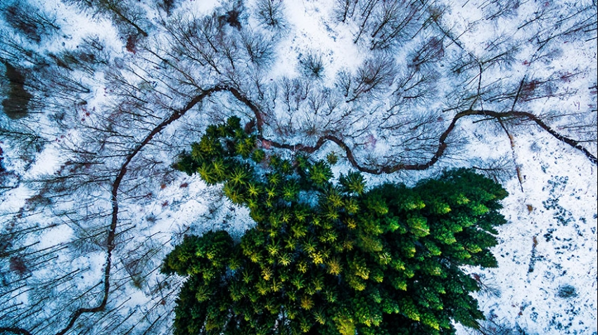 best-drone-photography-2016-dronestagram-contest-8-5783ac87ae38c-880