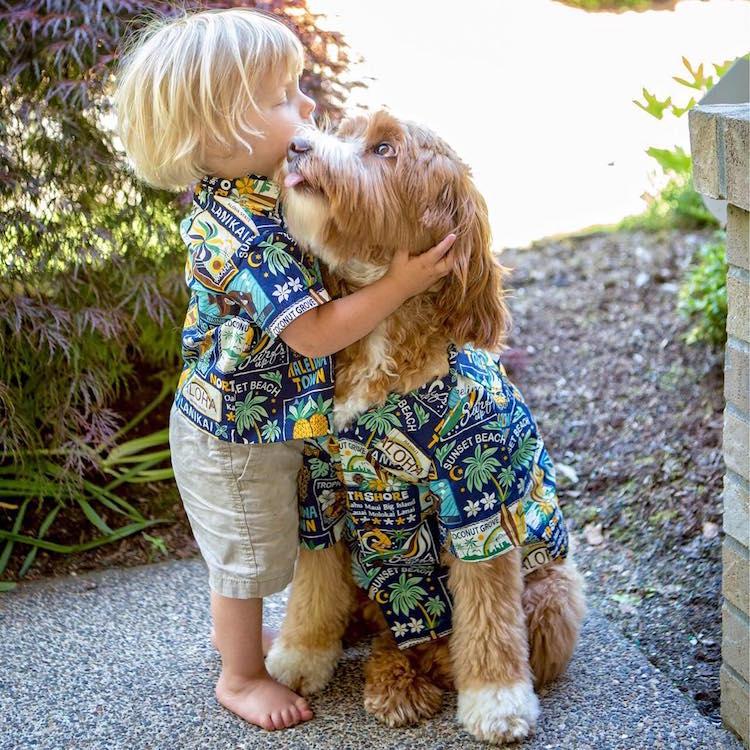 reagandoodle-dog-and-boy-16