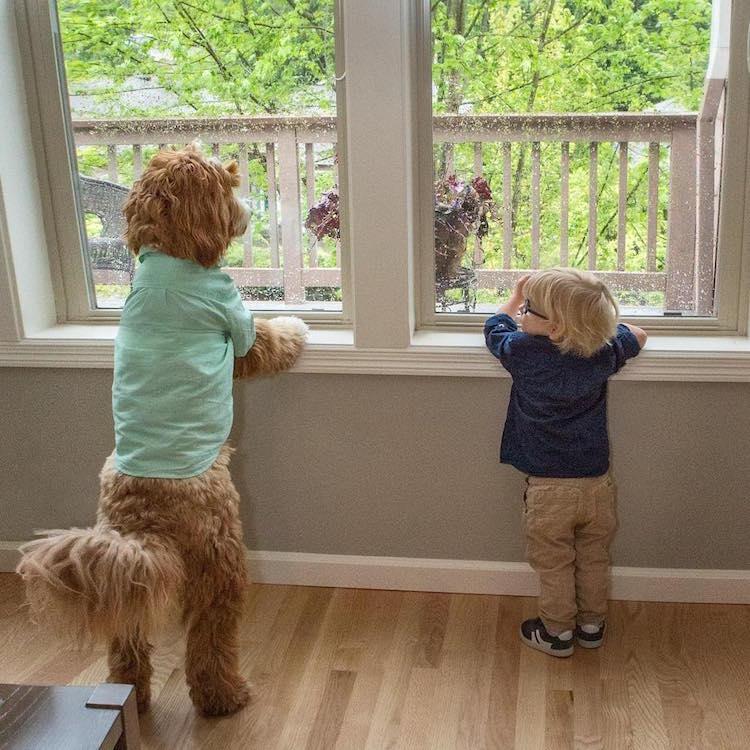 reagandoodle-dog-and-boy-5
